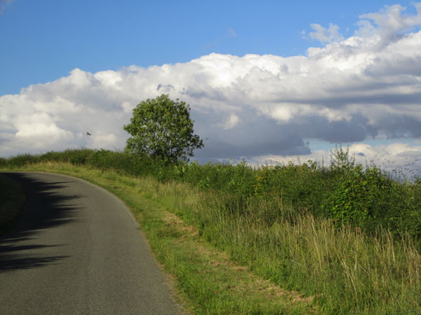 I love this shot. The road, the layers of green, the layers of cloud and then the sky...